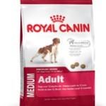 Få en rask hund med Royal Canin (Foto Petworld.dk)